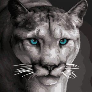 schilderen op nummer leeuwin